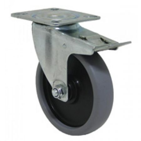 Castor Economy: 50 - 70 kg
