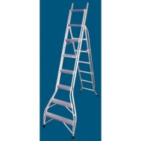 Ladder Aluminium: Allweld Dual Purpose Ladder