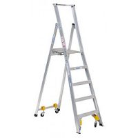 Ladderweld Industrial Platform Ladder