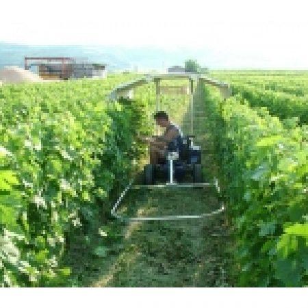 ZALLY JAY800 Vineyard Vehicle